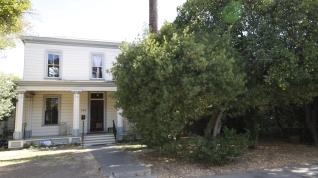 Evergreen Euonymus, 320 I St.